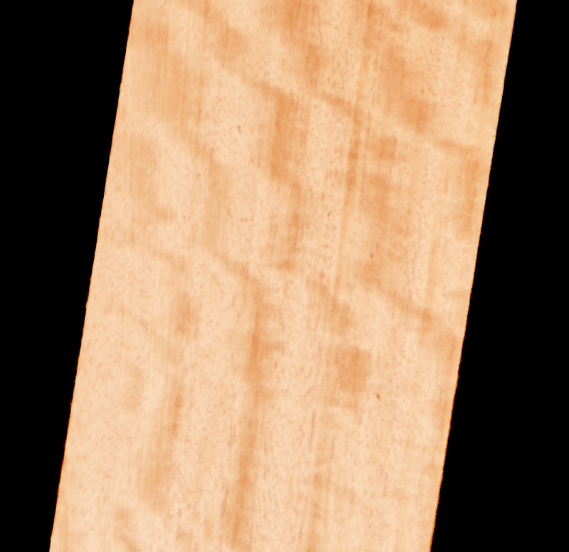 Kirby Fine Timbers Maple Silkwood Wholesale Suppliers