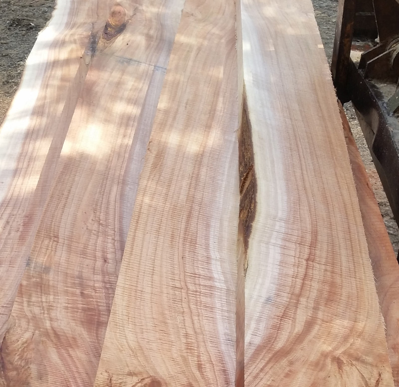 Kirby Fine Timber - QLD Maple Wholesale Timber