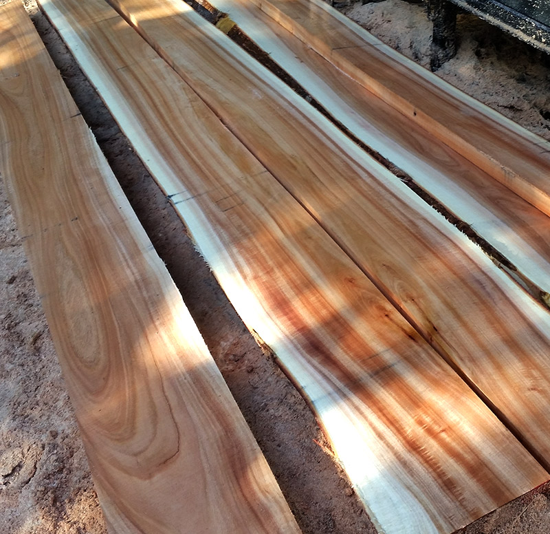 Kirby Fine Timber - Queensland Maple Wholesale Timber